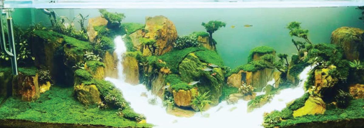 Hồ Thủy Sinh Thác Cát